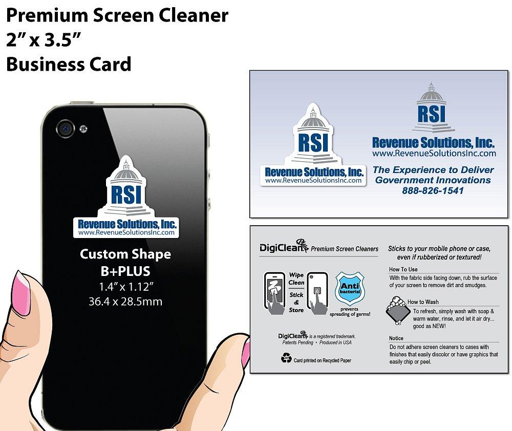 Revenue Solutions Inc